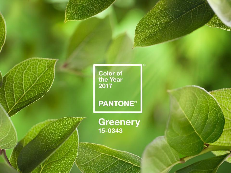 Pantone 2017 - Caroline Munoz2