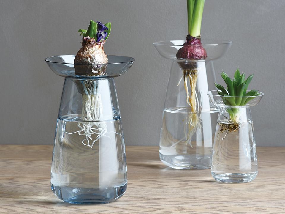 Vase Aquaculture by Kinto 1