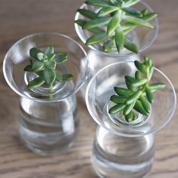 Vase Aquaculture by Kinto 4
