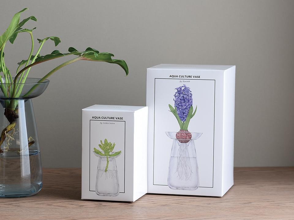 Vase Aquaculture by Kinto 5